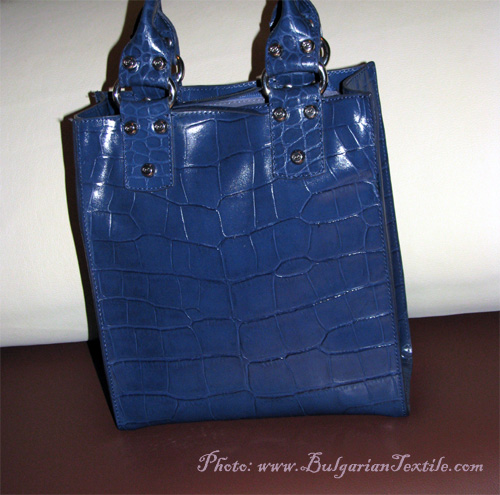 Blue Purse Fashionista