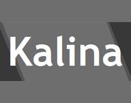 KALINA STYLE Ltd.