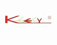 New Key Commer LTD
